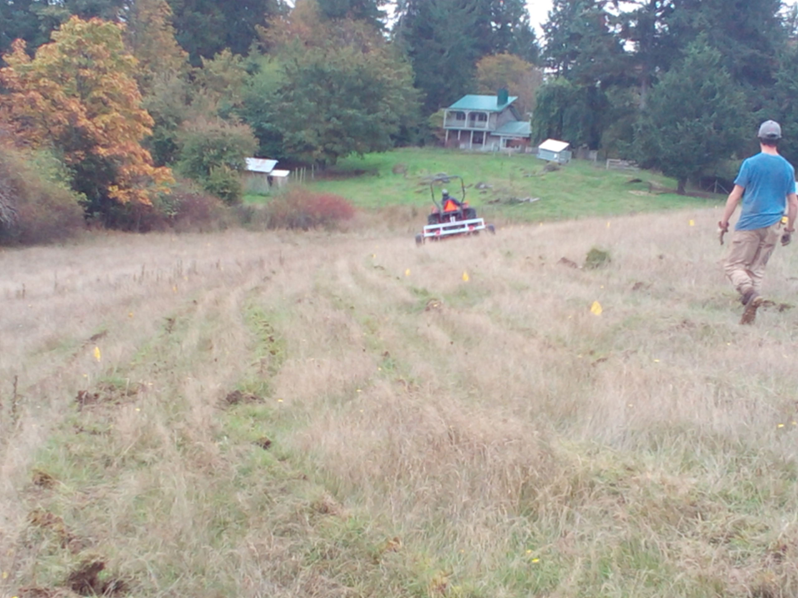 Keyline plowing compacted, steep sheep pasture.